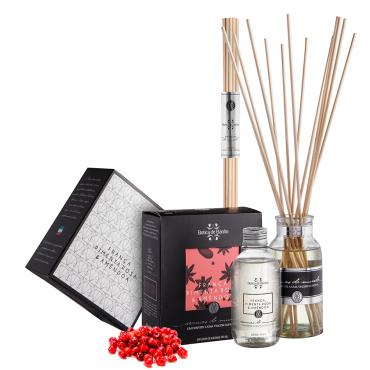 Kit Difusor de Aromas 250ml Aromas do Mundo França